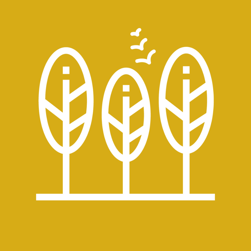 Simple drawing of three trees and birds flying on a yellow background